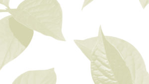 Leafy Background
